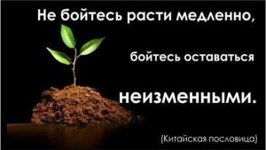 news1366859835