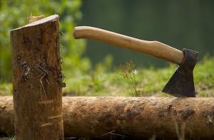 Вырубка леса в Чувашии