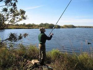 Рыболовы-браконьеры