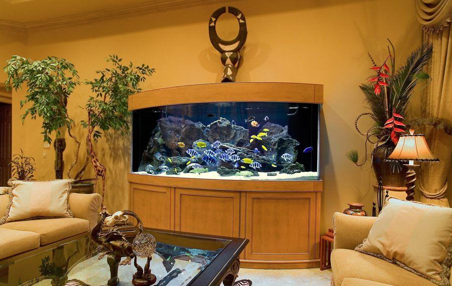 vibiraem-akvarium